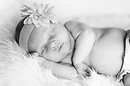 A photo from a session shooting my friends newborn baby. She's just 28 days old in this photo and was hands down the best model I've worked with.