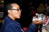 Crystal Allen of Dayton says hello to Leah, a 3-year-old German miniature schnauzer therapy dog during the Dayton's Women Fair at the Airport Expo.Center in Vandalia., Saturday, September 17, 2011.