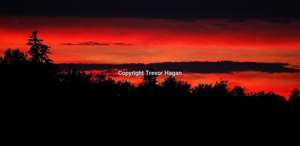 The sunset at Gull Lake, Monday, July 21, 2014. (TREVOR HAGAN)