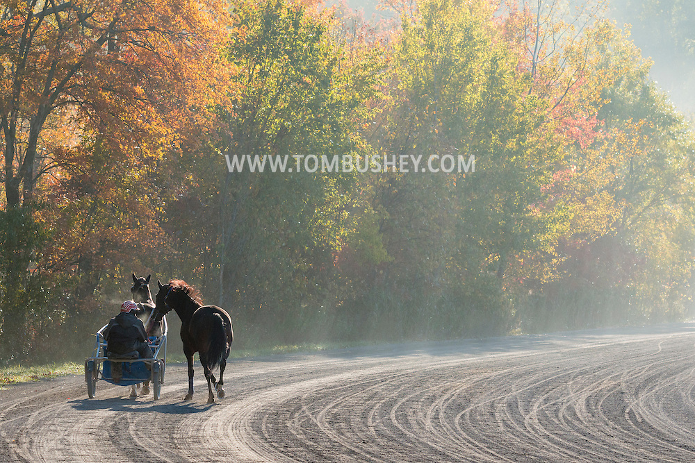 Mount Hope, New York - Harness racing horses work out at the Mount Hope Training Center track on a foggy fall morning on Oct. 15, 2016.