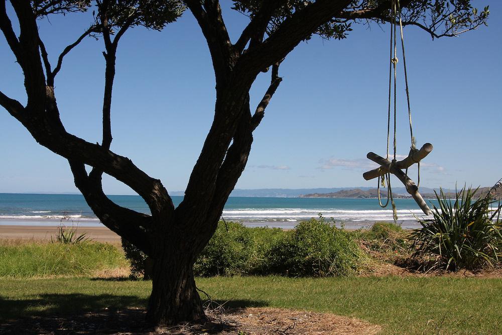 Swing in Pohutakawa tree, Makarori Beach, Gisborne, New Zealand, March 19, 2010.  Credit:SNPA/Pam Johnson