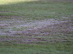Referee Iain Williamson was not happy with sections of the pitch at The Valley - Photo mandatory by-line: Robin White/JMP - Tel: Mobile: 07966 386802 11/01/2014 - SPORT - FOOTBALL - The Valley - Charlton - Charlton Athletic v Barnsley - Sky Bet Championship