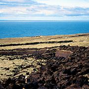 Coastal bog landscape on Aranmore Island, west of Ireland.