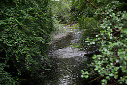 UK ENGLAND WALES LLWYDIARTH 1JUL15 - The river Vyrnwy at Pont Llogel in the river Severn catchment area.<br /> <br /> jre/Photo by Jiri Rezac / WWF UK<br /> <br /> © Jiri Rezac 2015
