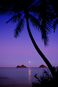 Full moon rise, Lanikai Beach, Oahu, Hawaii