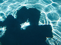couple shadow in pool water