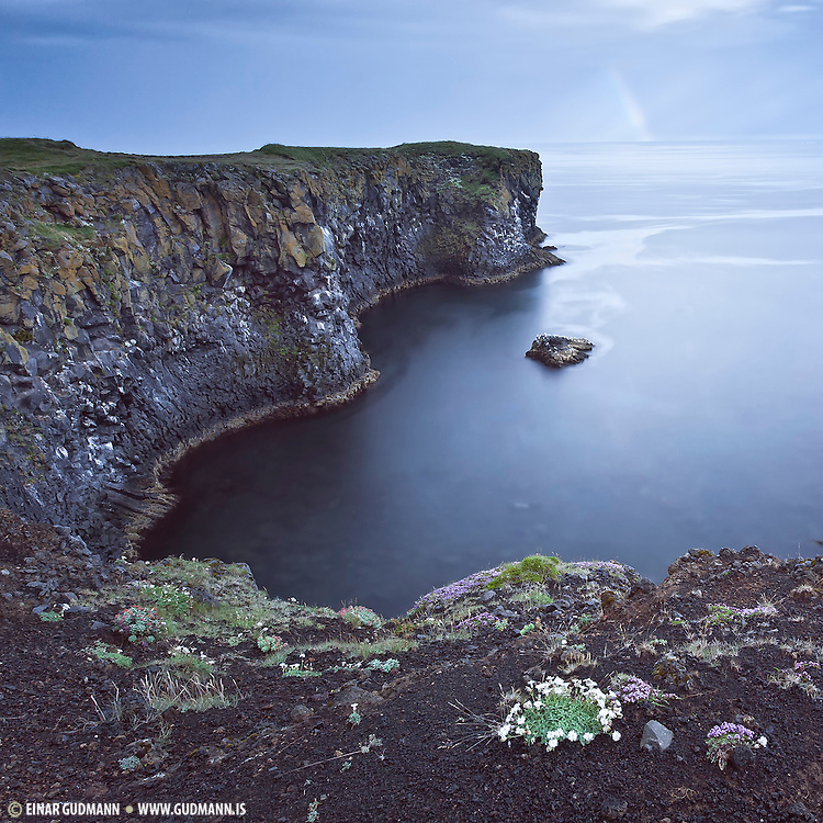 Arnarstapi er a popular location for photographers and tourists in the Snæfellsnes Peninsula which is in West-Iceland.
