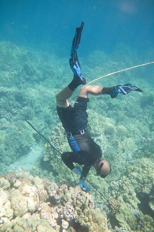 Kawika Auld, spearfishing off Puako coastline, access 56, Lalamilo ahupuaa, South Kohala, Big Island, Hawaii