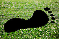 Close-up of footprint on grassy landscape