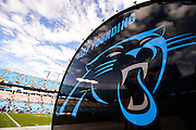 January 3, 2016: Carolina Panthers vs Tampa Bay Buccaneers. Panthers' Keep Pounding drum