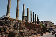 Detail from the Roman Forum, a rectangular plaza in the centre of Rome, Italy. Originally a marketplace, it became the centre of Roman public life. Now a fragmented and sprawling collection of ruins.