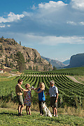 Blue Mountain vineyards, Okanagan, British Columbia, Canada