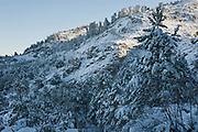 Sierra de las Nieves Biosphere Reserve, Malaga province, Andalusia, Spain.