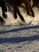 The paws of an eight dog sled team tear up the icy surface of the Kalkaska Winterfest course just after sunrise during the final day of the events scheduled racing.
