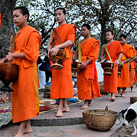 Monks Collecting Offerings During Sai Bat in Luang Prabang, Laos <br /> Each morning before dawn, hundreds of monks walk single file in their saffron robes along the streets of Luang Prabang collecting alms from local people while distributing food into the baskets of the poor.  Even the neighborhood dogs join this tradition in hopes that some sticky rice will fall their way.