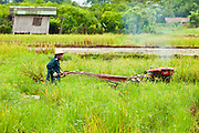 28 JUNE 2011 - CHIANG MAI, THAILAND: A man works his rice field with a gas powered cultivator. In the past such work was done with water buffalo, once an icon of rural Thailand, but more and more farmers are foregoing water buffalo in favor of mechanical tools.  PHOTO BY JACK KURTZ