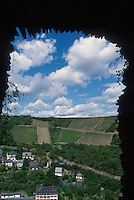 View of vineyards from Burg Rheinfels castle, St. Goar, Germany