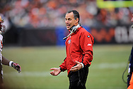 San Francisco 49ers head coach Mike Nolan during a loss to host Cleveland, Dec. 30, 2007..