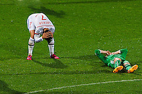 Deception Clement GRENIER - 19.04.2015 - Lyon / Saint Etienne - 33eme journee de Ligue 1<br />