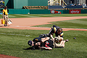 PITTSBURGH, PA - MAY 7: Police and security subdue a fan who began running the bases following the game between the Pittsburgh Pirates and San Francisco Giants on May 7, 2014 in Pittsburgh, Pennsylvania. The Pirates won the game 4-3. (Photo by Joe Robbins/Getty Images) *** Local Caption ***