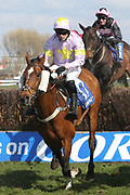 TAKINGRISKS (17) ridden by Sean Quinlan and trained by Nicky Richards winning The Class 1 (Grade 3) Coral Scottish Grand National Handicap Steeple Chase over 3m 7f (£215,000)   during the Scottish Grand National race day at Ayr Racecourse, Ayr, Scotland on 13 April 2019.