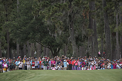 May 13, 2018 - Ponte Vedra Beach, FL, USA - The Players Championship 2018 at TPC Sawgrass..Tiger Woods with a huge gallery following him on #2 fairway (Credit Image: © Bill Frakes via ZUMA Wire)