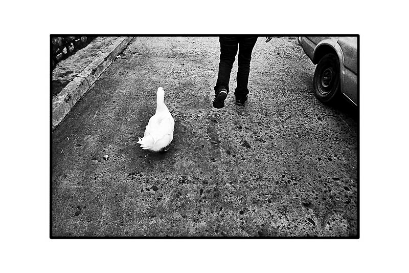 LA CALLE - 1/6<br /> BLACKPARAISO 2002<br /> neg/inkjet<br /> 30x40<br /> canson Baryta Photographique 310gsm