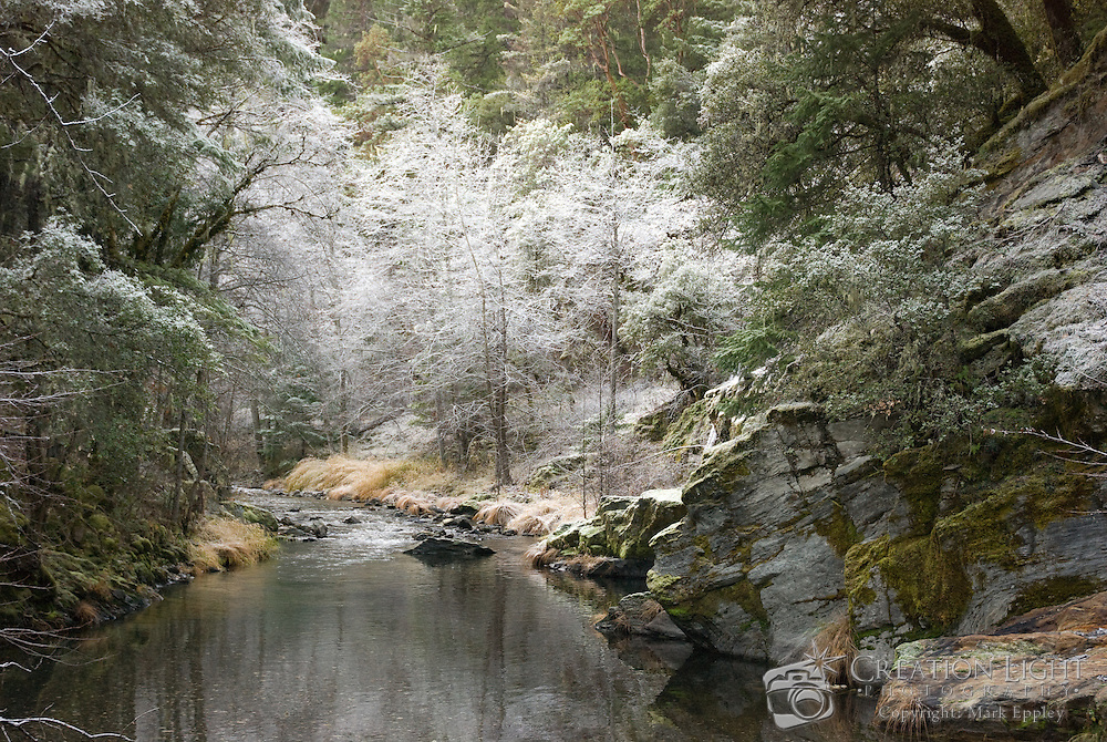 While searching for a Christmas Tree, I came a across this calm mountain stream in California that feeds into Applegate Lake. The white trees reflect in the calm stream and create a surreal winter scene.
