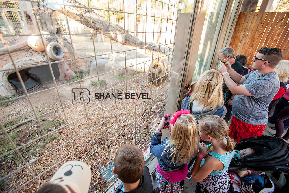 10/8/16 5:43:35 PM --  SFHS All-Employee Safari at the Tulsa Zoo. <br /> <br /> Photo by Shane Bevel