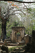 Africa. Kenya. Near Watamu. Historical monument..The Swahili Gede ruins of houses palaces and mosques dating back to the 13th century..CD0012