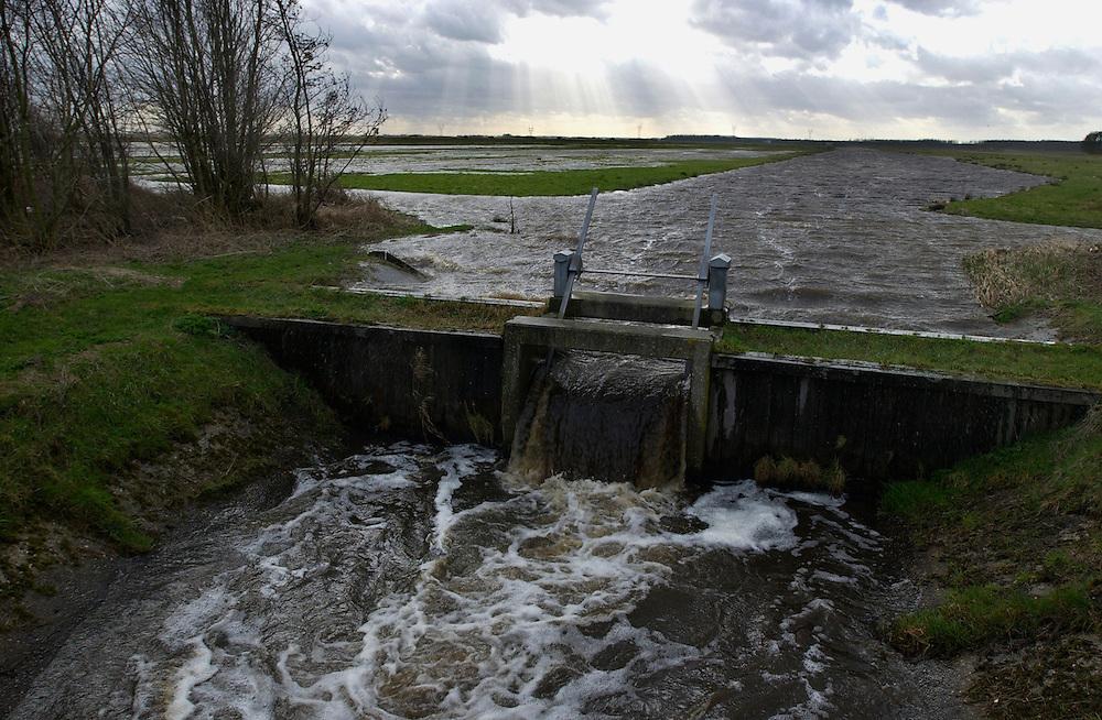 Nederland, omgeving Kampen, 26-2-2002...Sloten staan helemaal vol na grote regenval..waterbeheer, overstroming. klimaat...Foto (c) MIchiel Wijnbergh/Hollandse Hoogte