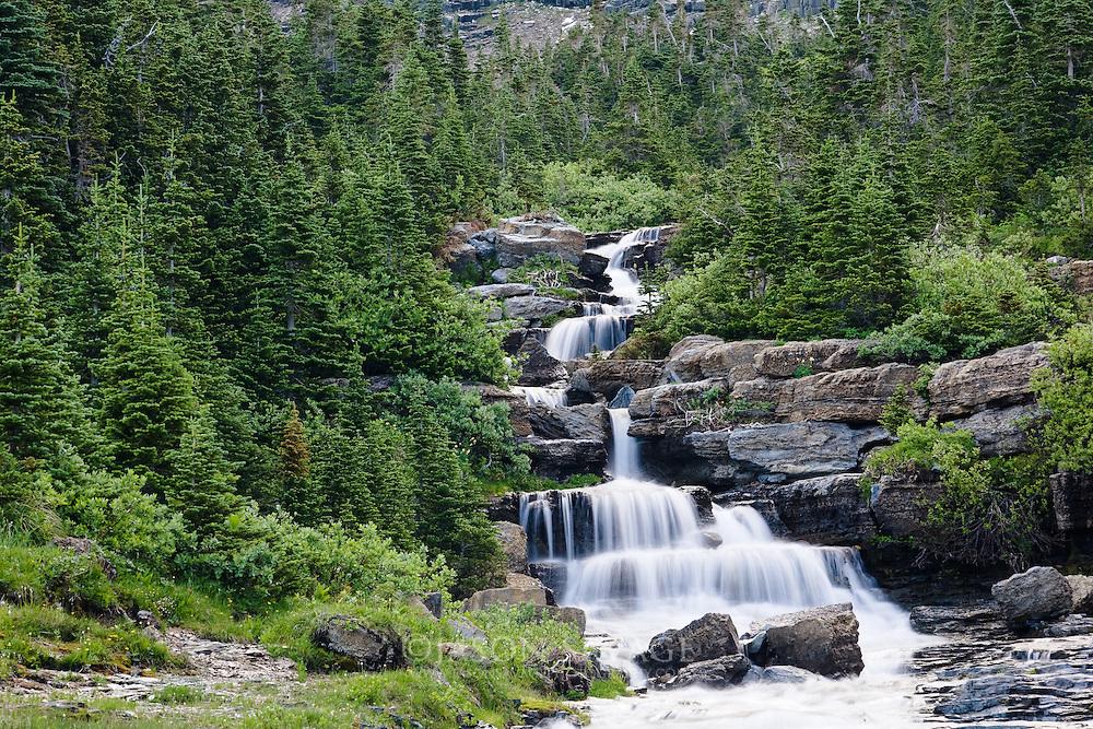 Lunch Creek in Glacier National Park