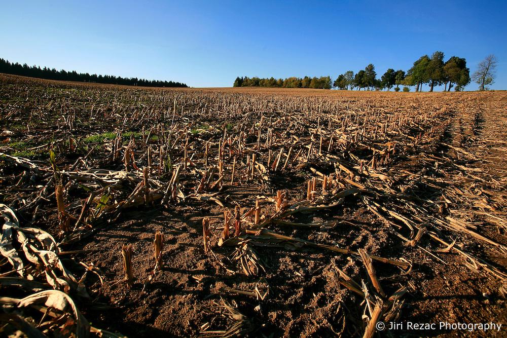 CZECH REPUBLIC VYSOCINA 16OCT11 - A harvested wheat field near Trpin, Vysocina, Czech Republic.....jre/Photo by Jiri Rezac....© Jiri Rezac 2011