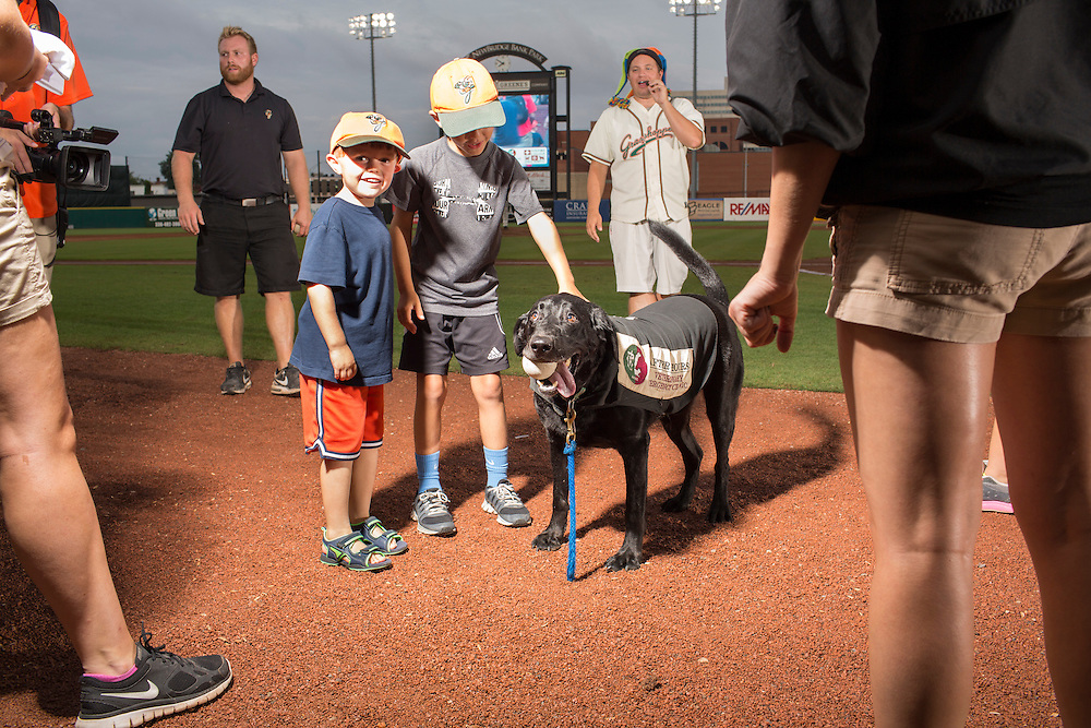 Master Yogi Berra, one of three bat dogs for the Greensboro Grasshoppers, is greeted by fans during a game against the Hickory Crawdads at NewBridge Bank Park, Greensboro, North Carolina, Monday, June 21, 2014.
