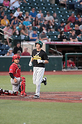 26 July 2014:  Aaron Dudley strides across home plate after making the rounds on a free ride courtesy of his home run during a Frontier League Baseball game between the Lake Erie Crushers and the Normal CornBelters at Corn Crib Stadium on the campus of Heartland Community College in Normal Illinois