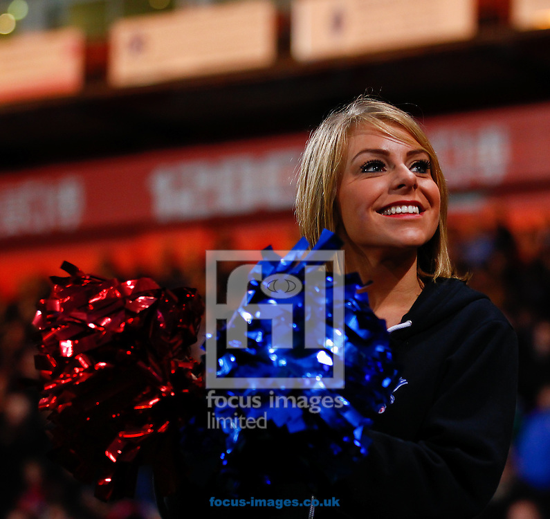 Picture by David Horn/Focus Images Ltd +44 7545 970036<br /> 09/11/2013<br /> One of the Crystal Girls during the Barclays Premier League match at Selhurst Park, London.