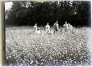 1900s glass plate with family standing in flowering field