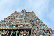Meenakshi Amman Temple (also called: Meenakshi Sundareswarar Temple, Tiru-aalavaai and Meenakshi Amman Kovil) is a historic Hindu temple located on the southern bank of the Vaigai River in the temple city of Madurai, Tamil Nadu, India. It is dedicated to Parvati, known as Meenakshi,