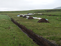 Peat for Islay Whisky............