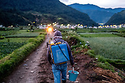 A hired labourer carries chemical application equipment towards a piece of farmland in the early morning.