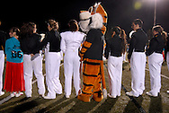 13 Nov. 2009 -- ST. LOUIS -- Oakville's Tiger mascot joins the school's band and cheerleaders on the field to form a tunnel for the introduction of players before the start of the MSHSAA playoff football game between Oakville and Fox Friday, Nov. 13, 2009. Oakville led the game 30-10 at halftime. Photo © copyright 2009 by Sid Hastings.