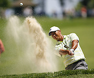 Tiger Woods of the US chips from the bunker on the fourth hole during the first day of the US Open Golf Championship at Winged Foot Golf Club in Mamaroneck, New York Thursday, 15 June 2006.