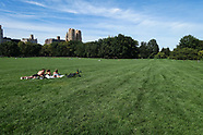 Central Park-Sheep Meadow