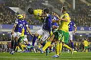 Everton v Norwich City 241112