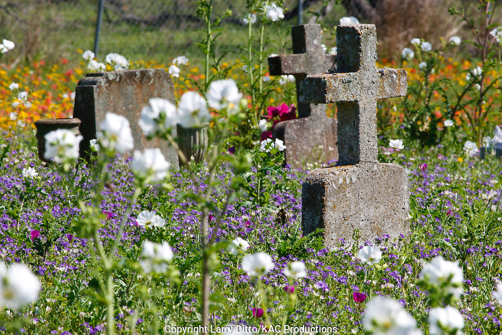 """Cowboys Cemetery"" on the historic Kennedy Ranch at Sarita, Texas"
