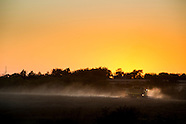 Sutter Family Farms/Soybean Harvest