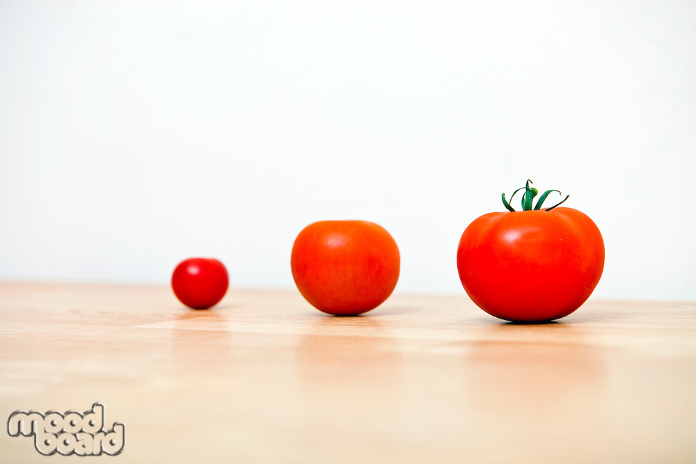 Studio Shot of three cherry tomatoes in a row