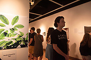 Visitors look at artwork during the opening of the Through the Survivors Lens art exhibit in Trisolini Gallery in Baker Center August, 29, 2019.Photo by Hannah Ruhoff