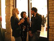Meredith Ostron, Molly Dent-Brocklehurst and Stephen Cornell, Richard Artschwager opening, Gagosian Gallery, 25 February 2003. © Copyright Photograph by Dafydd Jones 66 Stockwell Park Rd. London SW9 0DA Tel 020 7733 0108 www.dafjones.com