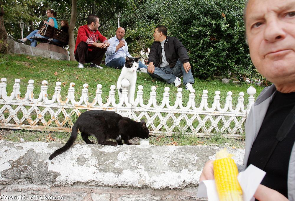 Men eating lunch in Mehmet Akif Ersoy Park in Istanbul, Turkey